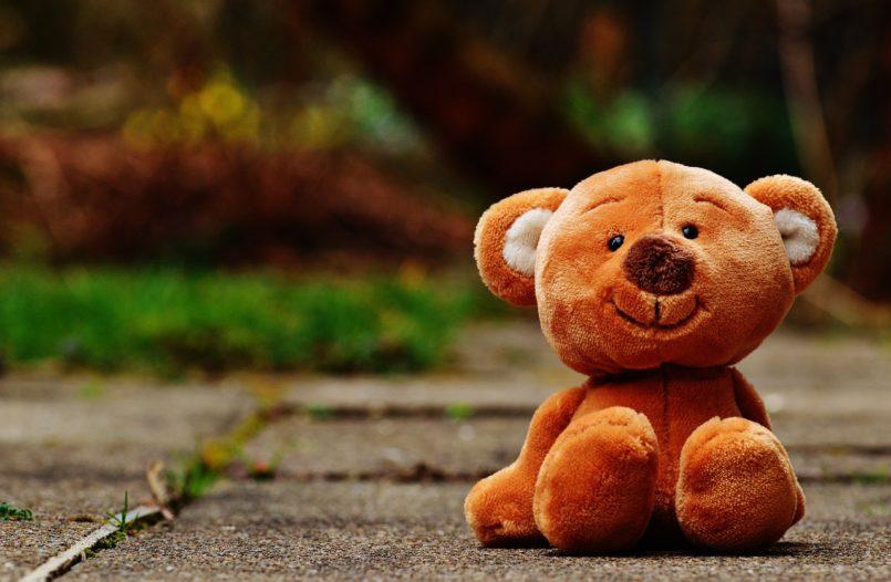 bear-1272758_1280